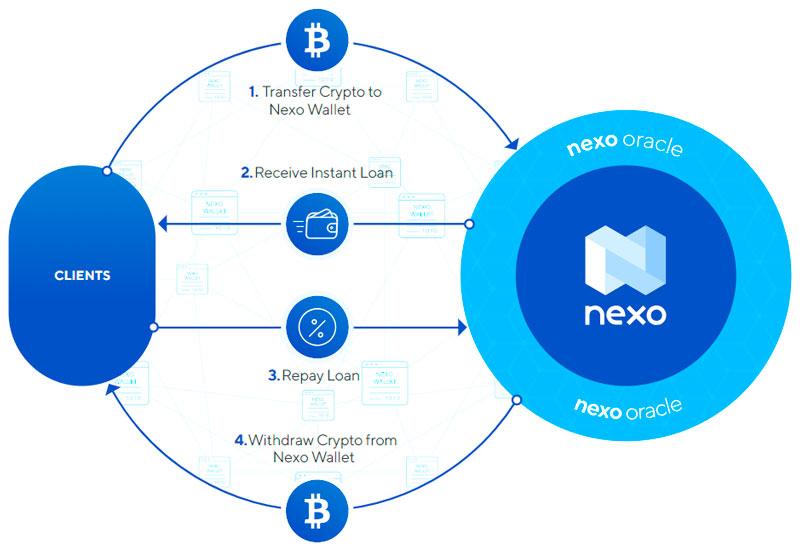 Бизнес модель платформы Nexo