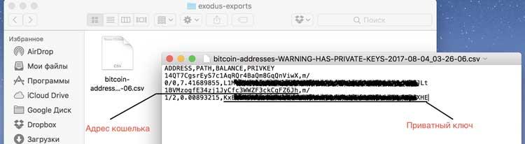 Там будут 2 кода: адрес вашего кошелька и его приватный ключ