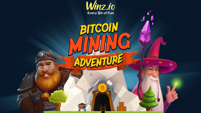 Платформа Winz