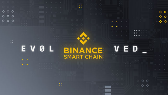 Блокчейн Binance Smart Chain (BSC)