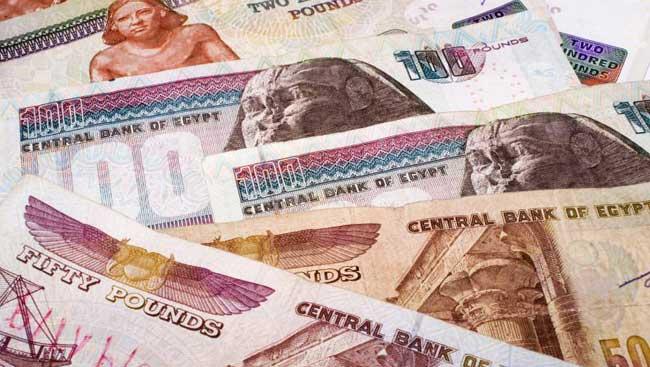 Биржа криптовалют Bitcoin Egypt