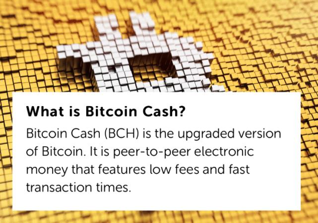 Роджер Вер дает определение Bitcoin Cash
