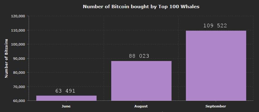 Динамика накопления биткоинов на топ-100 кошельках