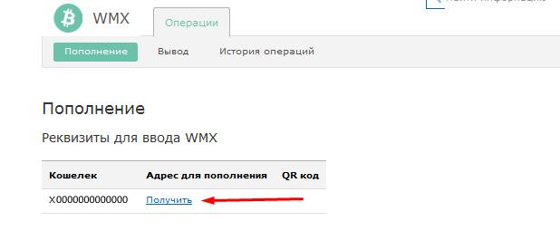 Реквизиты для ввода WMX