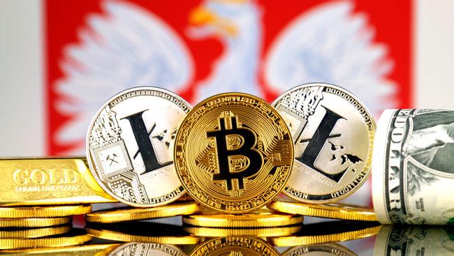 Криптовалюта в Польше