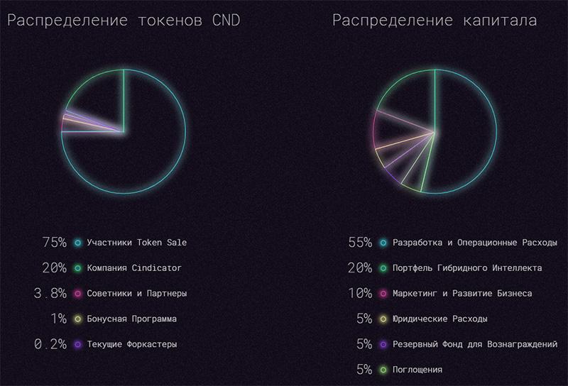 Распределение токенов Cindicator (CND)
