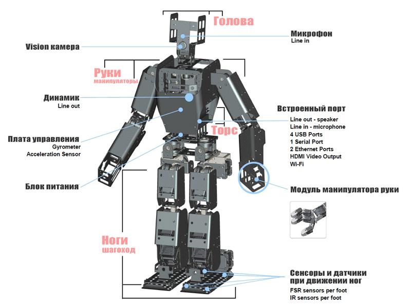 Наглядное устройство робота